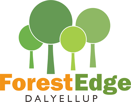 Forest Edge